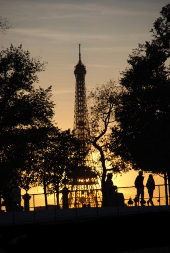 Jeu de lumière Parisien